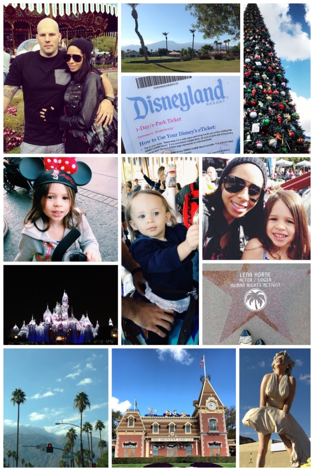 Travel-Gram Disneyland & Palm Springs