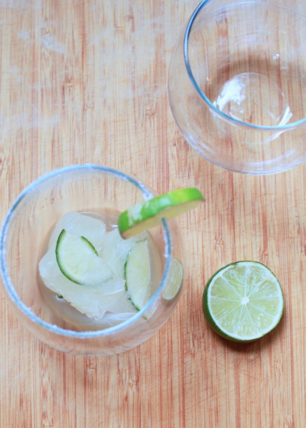 Margarita Ice cubes | Posh Little Designs