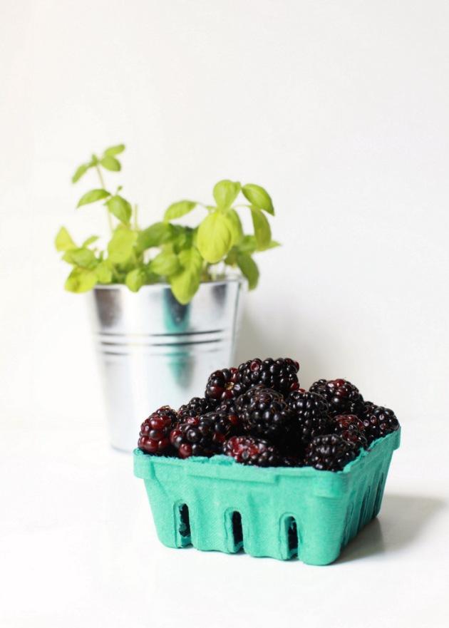 Blackberry Basil Sorbet + Champagne | Posh Little Designs